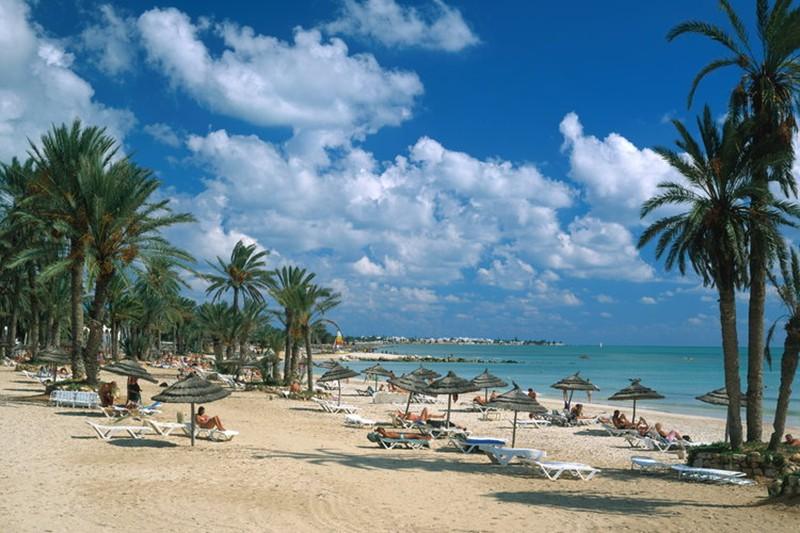 тунис джерба сентябрь туры